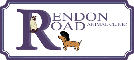 Rendon Road Animal Clinic